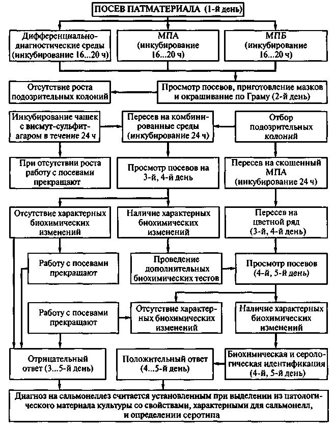Патология болезни ньюкасла шкур
