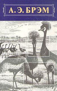 Жизнь животных, Том II, Птицы