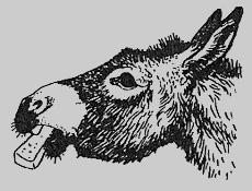 Хлопот полон рот