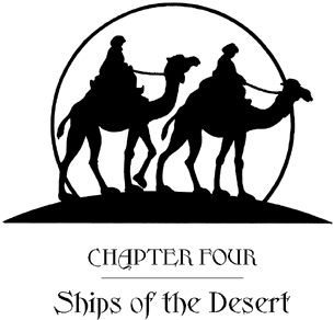 Season of the Sandstorms: A Merlin Mission