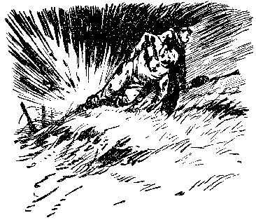 Тропой разведчика