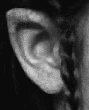 Мужские хитрости и женские уловки. Лучший справочник по распознаванию лжи! Книга-тренажер