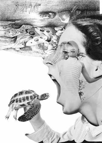 Мануал до черепахи