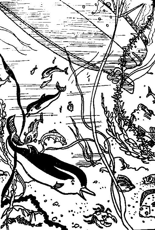 Необыкновенные приключения Галочки с волшебной палочкой
