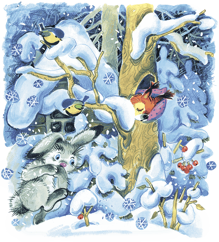 Где зимуют зайцы?