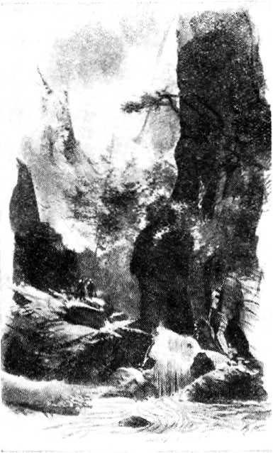 Земля Савчука