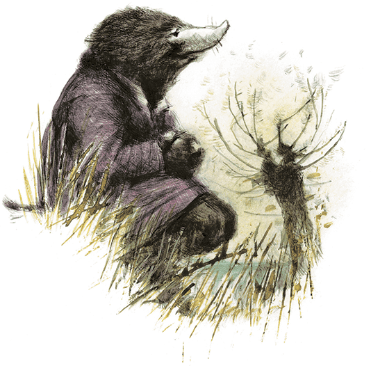 Ветер в ивах (перевод Колотов Александр)