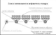 Учебник мнемотехники