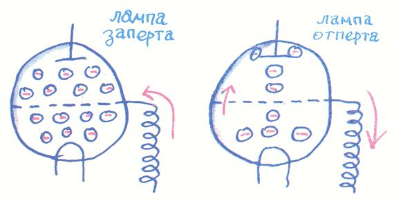 Лекции профессора Чайникова