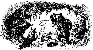 Как медведь оленеводом был