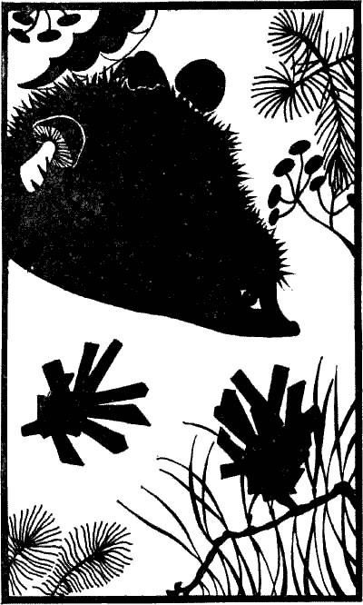 Фотограмма