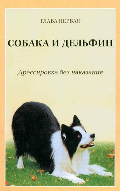 Дрессировка собак с помощью кликера