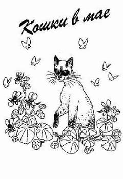 Кошки в мае