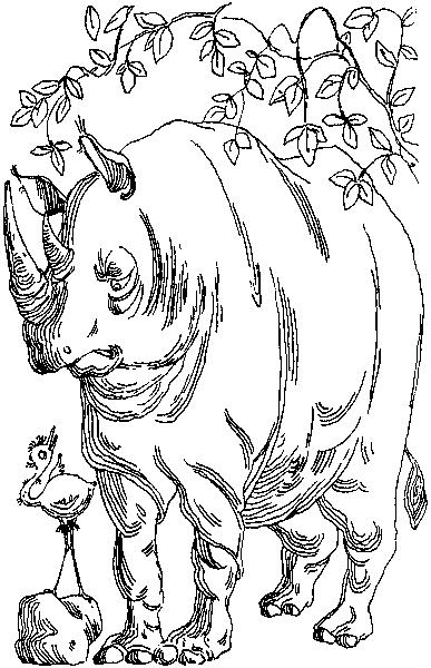 Возмутительный страусёнок