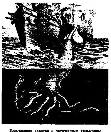 Чудовища морских глубин