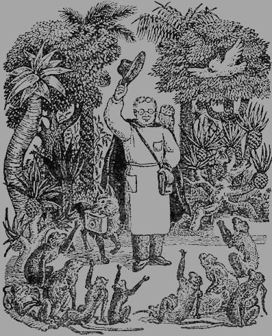Доктор Айболит (с иллюстрациями)