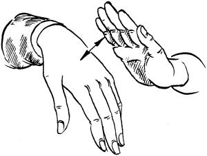 Руки и ногти мирового стандарта
